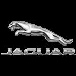Jaguar Car Trimming