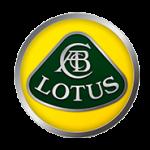 Lotus Car Trimming - M Trim
